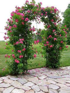 Captivating Why Rose Gardening Is So Addictive Ideas. Stupefying Why Rose Gardening Is So Addictive Ideas. Arbors Trellis, Garden Trellis, Garden Gates, Beautiful Roses, Beautiful Gardens, Rose Garden Design, Rose Arbor, Climbing Roses, Garden Structures