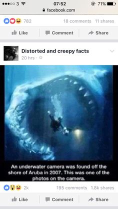 Megalodon sharks lived about to 28 million years ago in the Cenozoic Era. People think that the Megalodon is still out there and many think it's extinct. Out in the ocean is searched. They say if Megalodons still exist they live really deep.