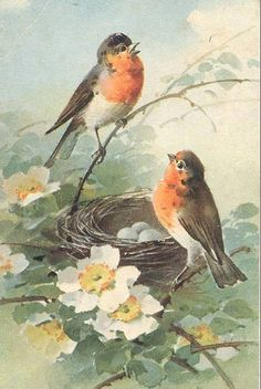 Robin Redbreasts Nesting Cross Stitch Pattern***L@@K***$4.95 CLICK THE PICTURE TO SEE PATTERN FORSALE
