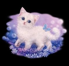 Cat Shirt, Kitten Walking In Garden with Butterflies, Blue Eyed Kitty Kat, MEOW! #Unbranded #CrewNeck