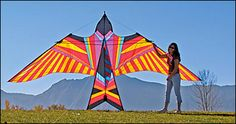 Into the Wind Kites -- a go to place for a long time for me. Worth visiting in person or online!