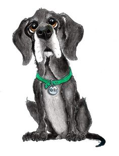 Custom Pet Caricature from Photos Single by CaricatureShoppe, $35.00