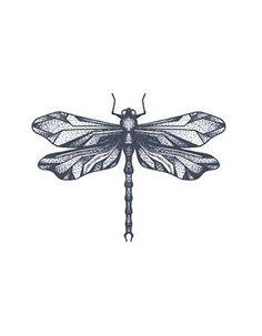 Dragonfly Tattoo Baby Tattoos, Family Tattoos, Body Art Tattoos, Small Tattoos, Sleeve Tattoos, Tatoos, Dragonfly Drawing, Small Dragonfly Tattoo, Dragonfly Art