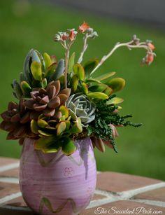 Succulent Arrangement in a Ceramic Egg for Easter