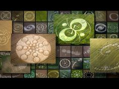 Crop Circles — Messages in the Fields Crop Circles, Crop Field, Mysterious Universe, Aliens And Ufos, Mind Games, Flower Of Life, Weird And Wonderful, Sacred Geometry, Mother Earth