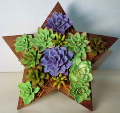"Star The wooden frame ""star"" is decorated with succulents of hand-molding (polymer clay). Author's work."