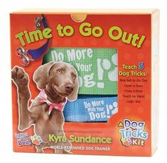 Perfect for potty training your new pup! #teachdogtocome