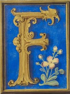 England (Westminster or London), 1528 Fancy Letters, Floral Letters, Illuminated Letters, Illuminated Manuscript, Decorated Letters, Letter Ornaments, Name Pictures, Art Ideas, Initials