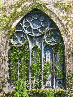 A beautiful church window