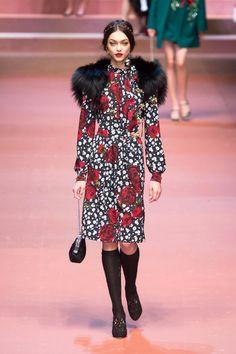 Top trend fall 2015 Dolce & Gabbana