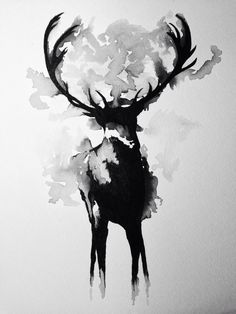 Deer Artwork | AARV