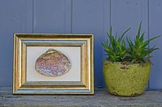 I love to go on vacation somewhere near the sea. In fact all my favourite places in the world are coastal ones. On my last holiday I picked up some lovely large shells on the beach. I have already made some shell dishes this year. However, this time I thought I would combine the shells with maps to create a momento gift to frame and hang on the wall.