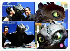 """To toast the release of """"How to Train Your Dragon at a private studio party, DreamWorks commissioned boutique cake maker Fernanda Abarca, who is also an artist at the company, to create this four-foot tall, seventy-pound statute of Toothless the Dragon. Toothless Party, Toothless Cake, Cute Toothless, Disney Dishes, Friends Cake, Dragon Cakes, Dragon 2, Dragon Party, Cake Makers"""