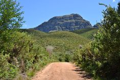Path to the West Peak of the Helderberg Mountain Sell Property, New Adventures, Beautiful Images, Paths, The Neighbourhood, Mountain, Country Roads, Live, The Neighborhood