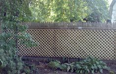 lattice fence | lattice_fence