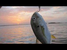 Perdido Key Deep Sea Fishing