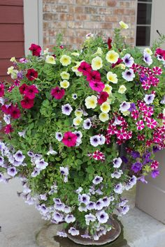 Petunia planter!  Plus lots of other planter ideas.  20 planters in total!  Get some idea for your container gardens.