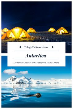 FAQs and tips for planning a trip to Antarctica. via @thethoughtcard