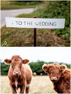 A stunning Hales Hall Barn wedding in Norfolk!