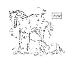 Three more free horse/pony/colt vintage embroidery patterns, including one of a mother horse and her baby. Now that I have five, I'm going to have to think of making a quilt for my favorite horse lover <3