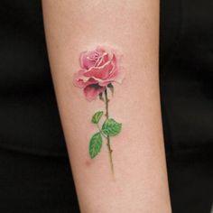 Linds rosa