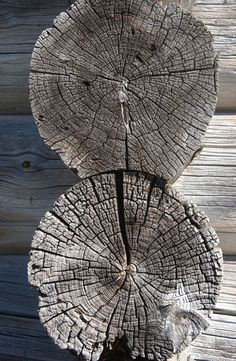 ....looks better with age - all those wrinkles and cracks = character: learn from the wood.....
