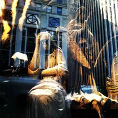 #crimsonpeak #storewindows #bergdorfgoodman #NYC #fifthavenue #gothic #horror
