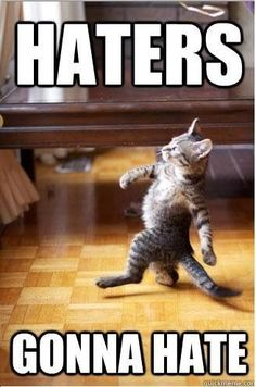 Cat haters going to hate