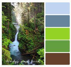 Color Palette forest