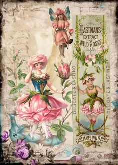Flower Ladies with pink roses. Eastman's Extract of Wild Roses Ad. Decoupage Vintage, Éphémères Vintage, Images Vintage, Decoupage Paper, Vintage Labels, Vintage Ephemera, Vintage Pictures, Vintage Cards, Vintage Paper