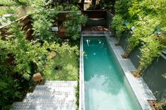 Bamboo lined pool
