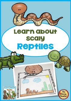 Find out about snakes, crocodiles and turtles. Our Reptiles Fact booklet will inspire your students to read and write. Illustrating the learning is not only fun but a great way to consolidate the learning! Included in this product is a black and white informational book about reptiles, a worksheet for note-taking and the research form to be filled out by the child. A craft is also included. Explore the great outdoors to learn everything about reptiles! Reptiles Facts, Les Reptiles, Pet Supermarket, Guided Reading Groups, Independent Reading, Differentiated Instruction, Kindergarten Class, Serpent, Crocodiles