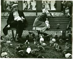 1960's. Pigeons on Dam square in Amsterdam. Photo Dolf Toussaint. #amsterdam #1960 #Dam