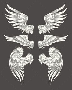 Buy Set of Vector Angelic or Bird Wings by vectorpocket on GraphicRiver. Set of vector illustrations of angelic or bird wings isolated on dark background, sketch, design element for tattoo Dark Angel Wings, Angel Wings Drawing, Dark Angel Tattoo, Angel Wings Art, Wings Sketch, Bird Sketch, Zwilling Tattoo, Tiny Bird Tattoos, Tattoo Bird