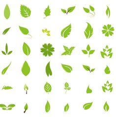 나뭇잎 일러스트 4