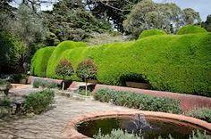 Garden between the two mazes