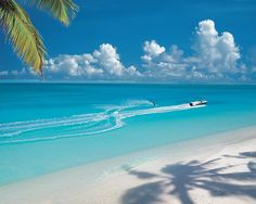 WATER-SKI AROUND THE BEAUTIFUL RESORT ISLANDS OF MALDIVES