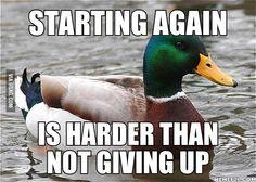 Actual Advice