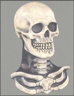 Haunt the neighbourhood this Halloween in the Skeleton Skull Mask With Chest! Shop the UK's biggest range of Fancy Dress & Halloween Costumes. Scary Halloween Masks, Scary Clown Mask, Clever Halloween Costumes, Halloween Magic, Scary Costumes, Halloween Costume Accessories, Scary Clowns, Halloween Horror, Vintage Halloween