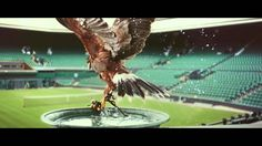 Probably one of the best commercials I've seen.  Perfectionists: Rufus - The Real Hawk-Eye   Stella Artois UK