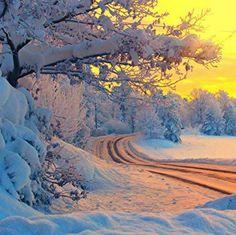 Winter sun.