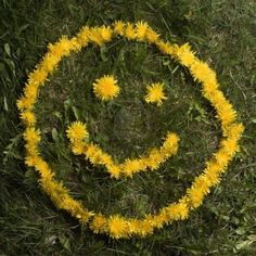Artsy Smiley Face Dandelions On Green (editar agora): foto stock 13441681 Yellow Bouquets, Yellow Flowers, Heart Pictures, Beautiful Pictures, Artsy Bilder, Quotes About Photography, Green Lawn, Children Images, Photo Editing