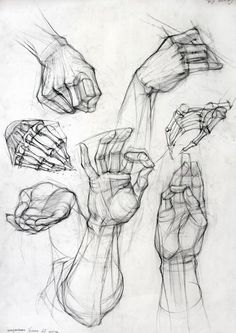 A good rendition of hands. I like the skeleton fingers best. A little busy, but good reference.                                                                                                                                                                                 More