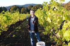 Natasha harvesting at Youngberg Hill.  At 13 years old she has been a part of harvest for the last 10 years.