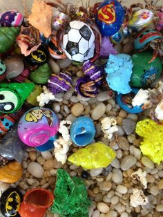 Hermit Crabs in Celebrate Cape May