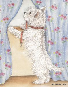 "Dogs Westie ""Watching!"" Open Edition Print of Original Painting by Su Barratt  #Realism"