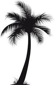 vector Silhouette of palm tree Osiris Tattoo, Small Tattoos, Cool Tattoos, Image Bleu, Palm Tree Drawing, Vintage Illustration, Palm Tree Silhouette, Arte Tribal, Tree Images