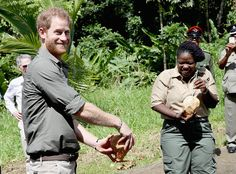 Prince Harry from The Big Picture: Today's Hot Pics  The princeopens a coconut at the Vermont Nature Trail on the seventh day of an official visit to the Caribbean.