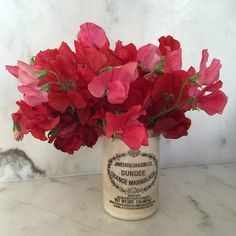 """Sweet Peas from my sweet peas @hollyflorala"""