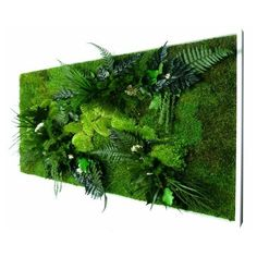 tableau mur vegetal 3d succulentes et bois flotte d coration et 3d. Black Bedroom Furniture Sets. Home Design Ideas